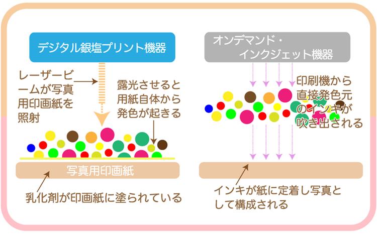 卒園アルバム-キッズドン!-銀塩プリント説明